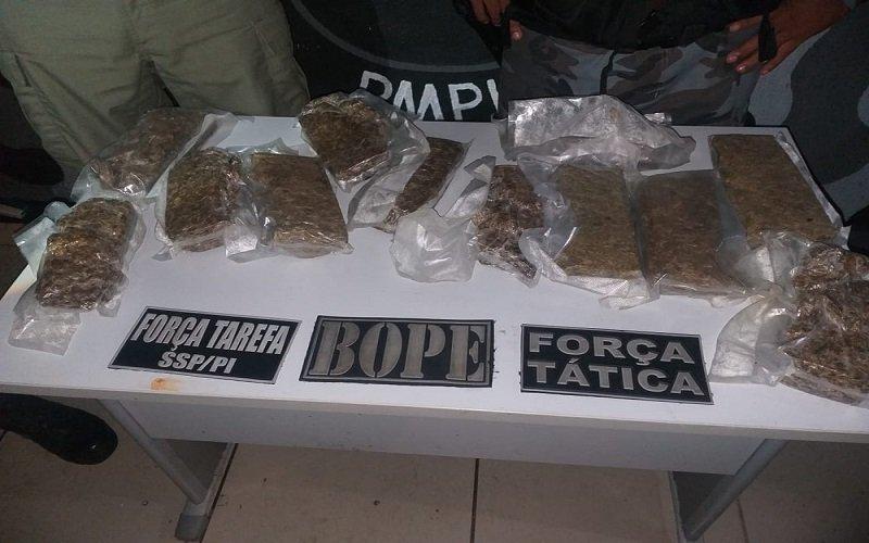 PM apreende quase 12 kg de droga escondida dentro de lagoa na Zona Norte de Teresina